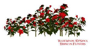 TW3D Hibiscus Flowers