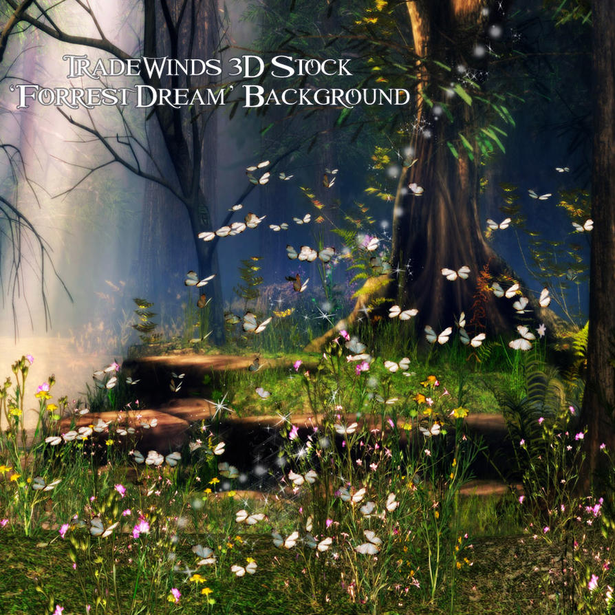 TW3D Forrest Dream by TW3DSTOCK