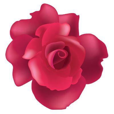 Vector rose by melemel on deviantart vector rose by melemel voltagebd Gallery