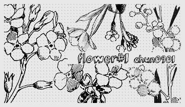 flower01 by chun0901