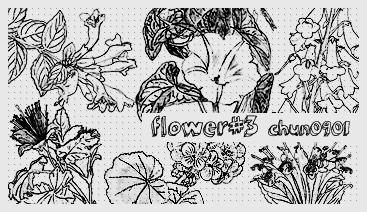 flower03 by chun0901