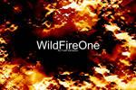 WildFireOne