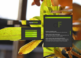 Full flash website by dFEVER