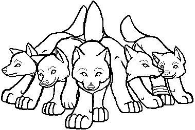 wolf rain coloring pages - photo#13