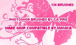 brushes by ca_pris