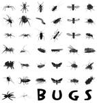 38 Bugs PS Brushes