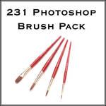 231 Photoshop Brushes