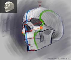 human skull - sketch tutorial