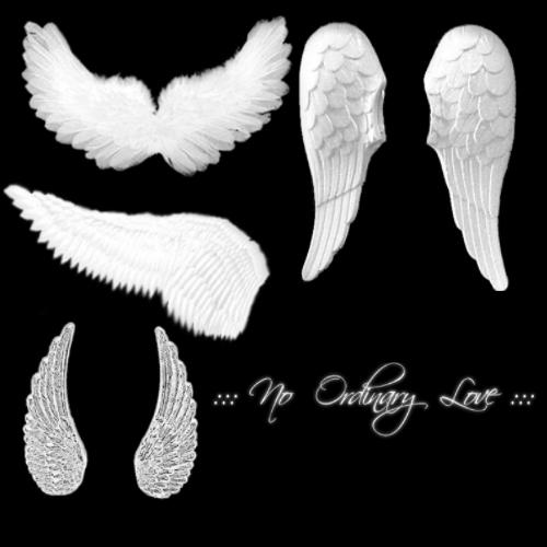 Angel Wings Brushes 2 by NoOrdinaryLove