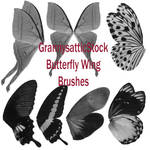 Grannys Butterfly Wing Brushes