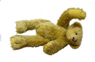 Teddy psd by GRANNYSATTICSTOCK