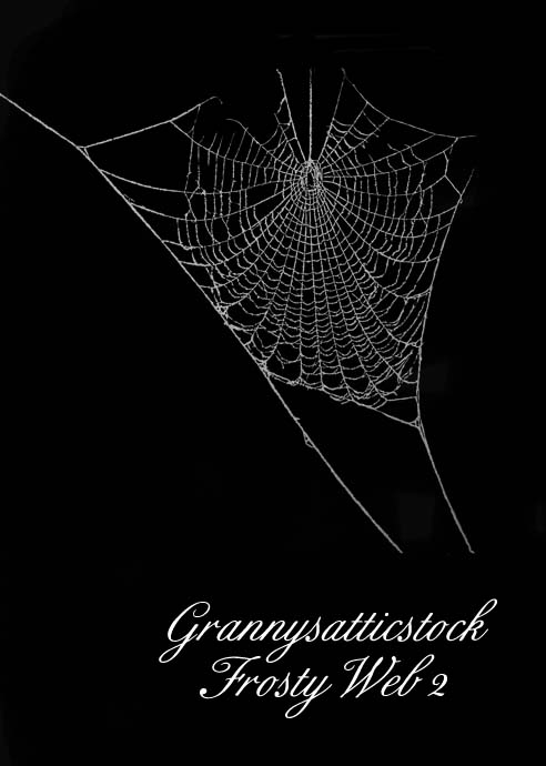 frosty web 2