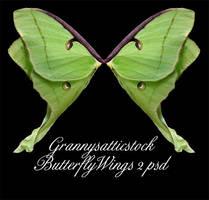 Butterfly Wings 2 psd by GRANNYSATTICSTOCK