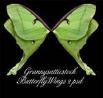 Butterfly Wings 2 psd