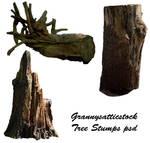 Tree Stumps psd