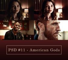 Psd #11 - American Gods