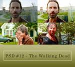 Psd #12 - The Walking Dead