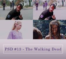 Psd #13 - The Walking Dead