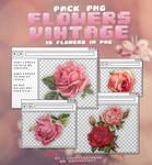Vintage Flowers - PACK PNG