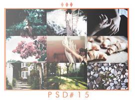 psd #15 by Inmyparadise