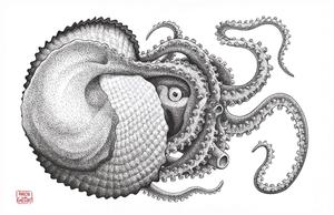 Argonaut Octopus by aaronjohngregory