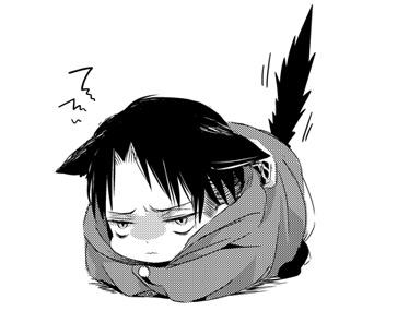 Cat Attack! - Neko!Levi x Reader - Modern!AU by