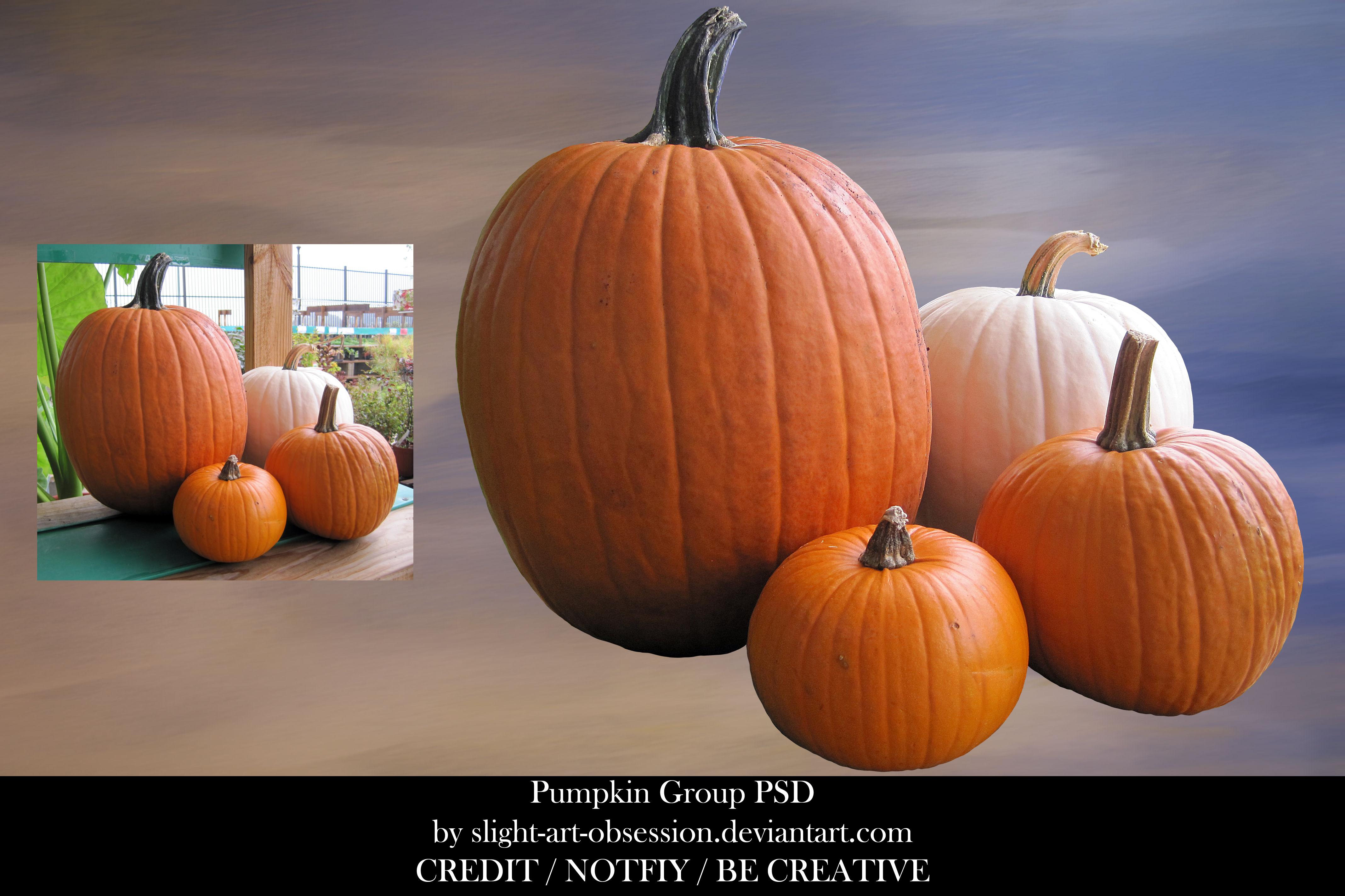 Pumpkin Group PSD