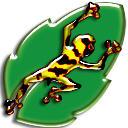 frog on a leaf by gr8koogly