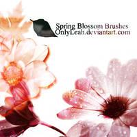 spring brushes
