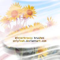 winter breeze brushes