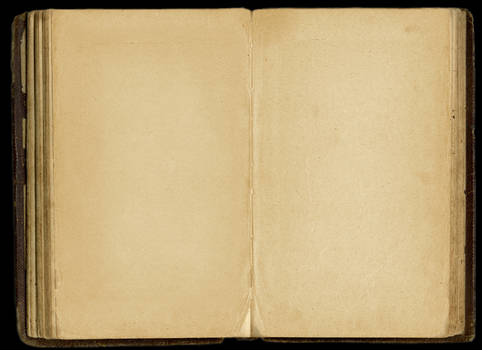 Old Blank Journal