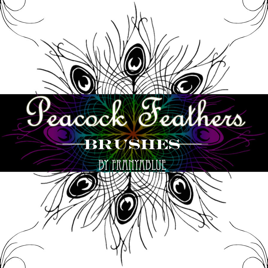 Download cool peacock feather brushes for photoshop cs5