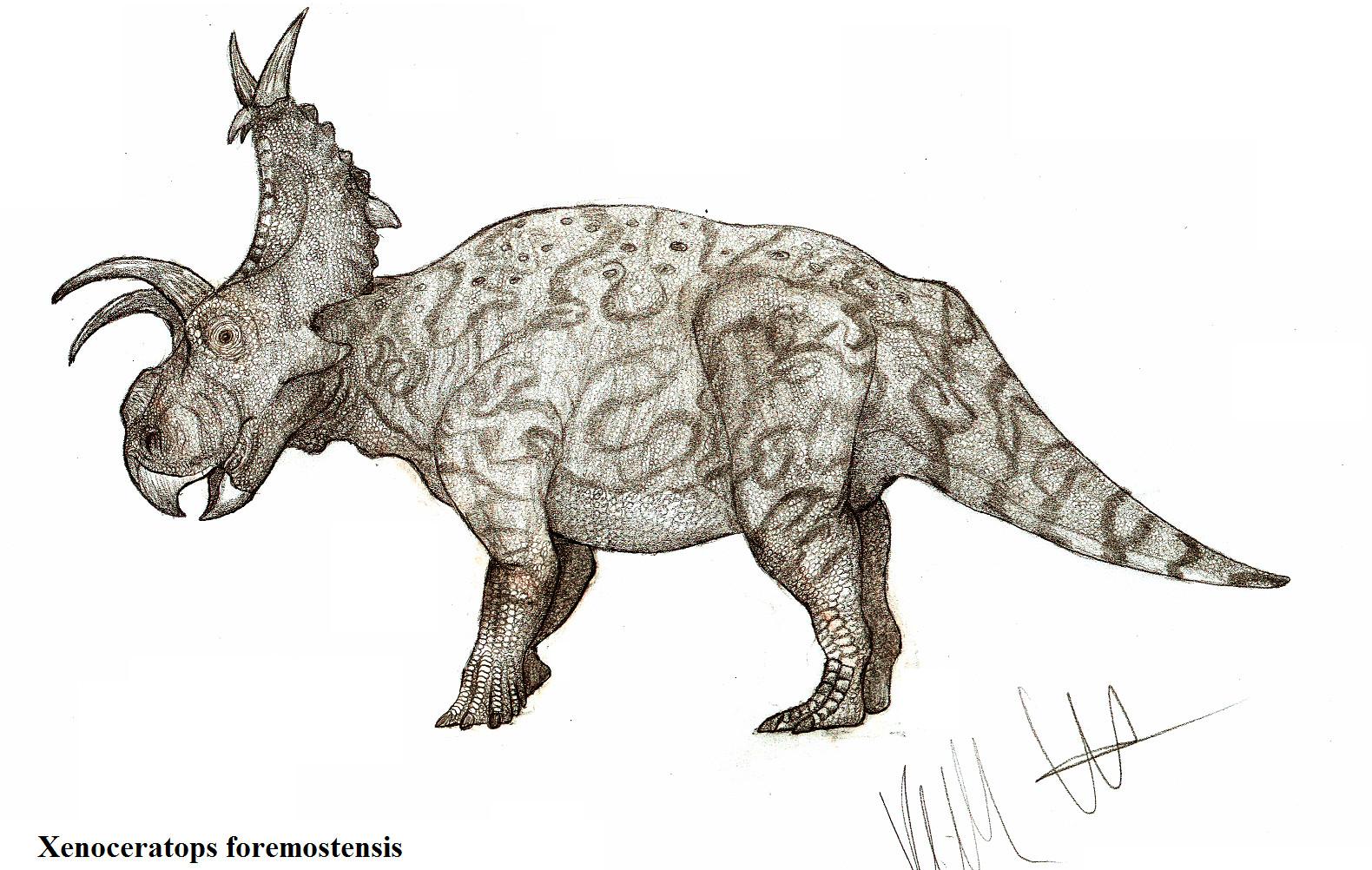 Xenoceratops formostensis