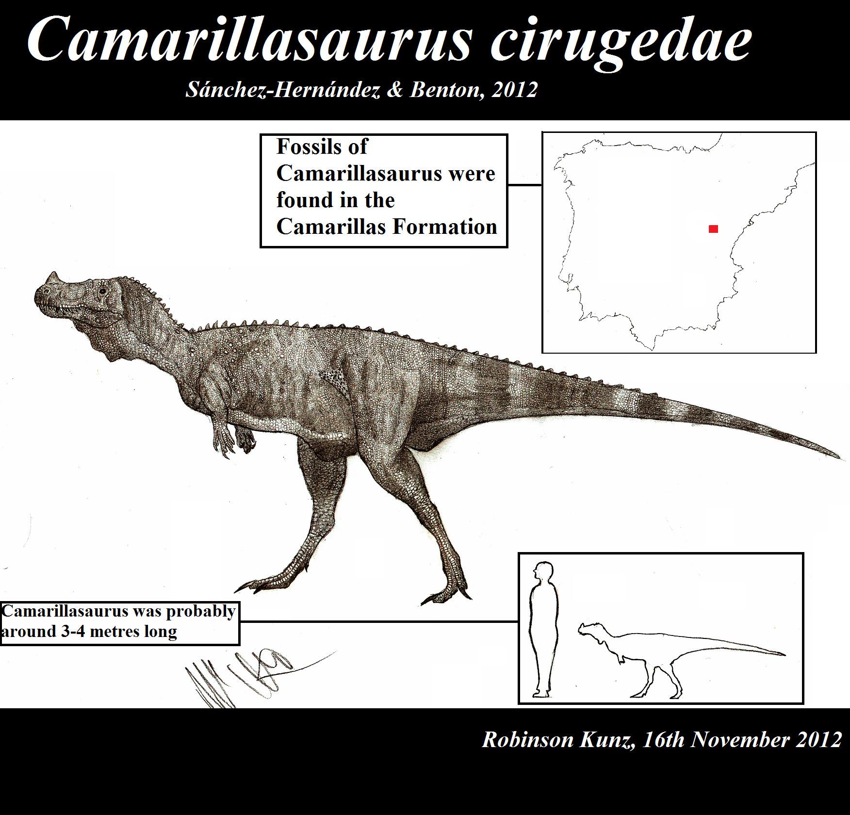 Camarillasaurus cirugedae