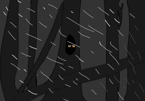 Darkforset
