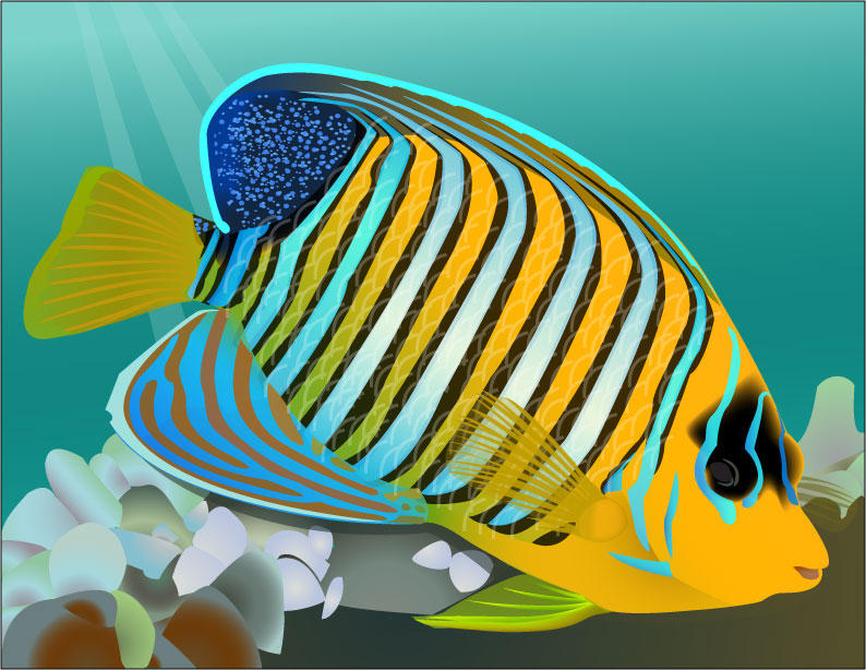 Tropical fish by mad ethel rackam on deviantart for Jans tropical fish