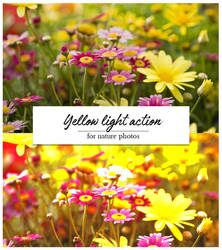 Yellow light action
