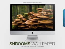 Mushrooms Wallpaper by MrFolder