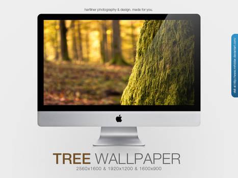 The Tree Wallpaper