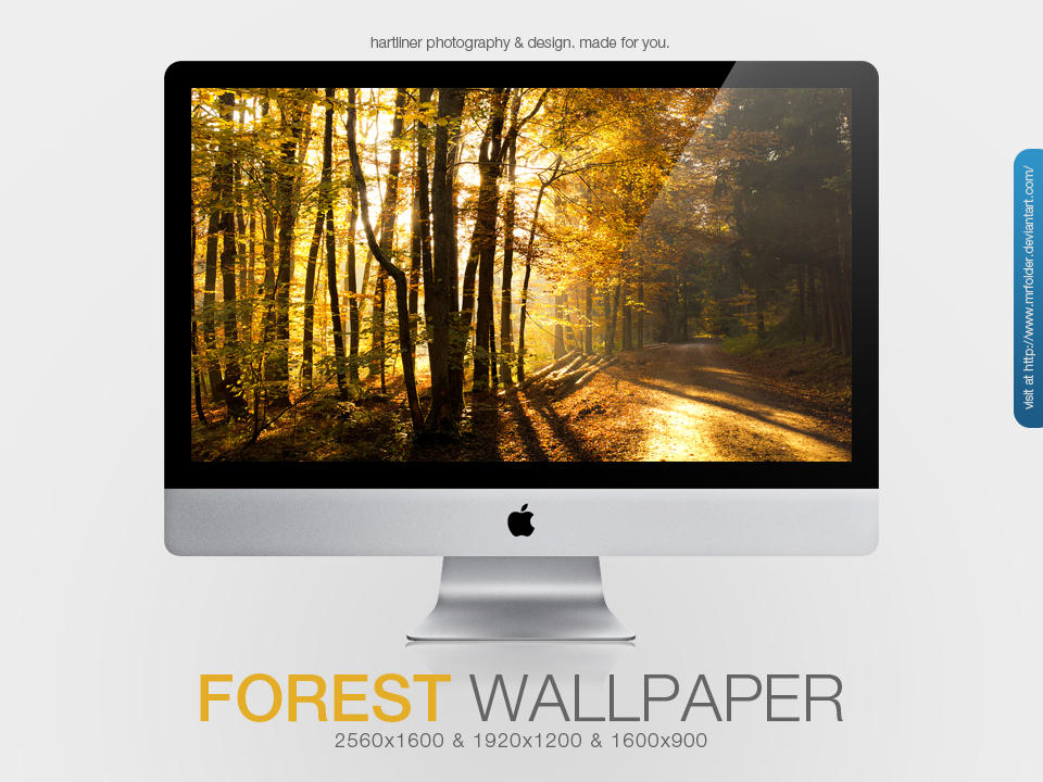 Forest Wallpaper by MrFolder