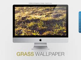 Grass Wallpaper by MrFolder