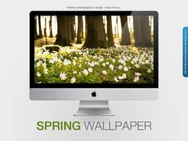 Spring Wallpaper by MrFolder