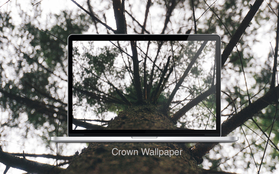 Crown by MrFolder