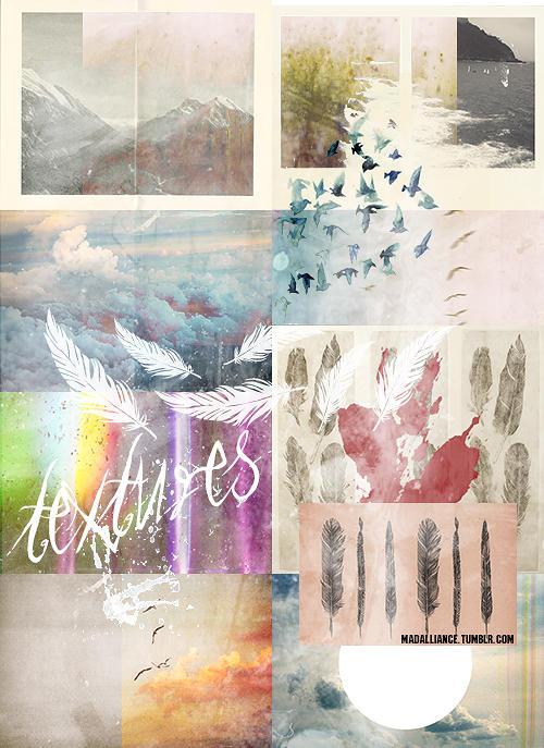 Birds and Sky Inspired by NYVelvet