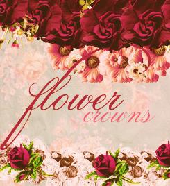 Flower Crowns PNG ZIP by NYVelvet
