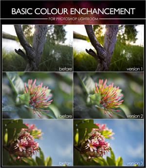 Basic Colour Enhance Presets - For Lightroom