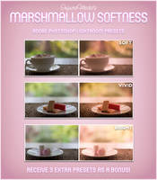 Marshmallow Softness LR Preset Pack - Free by InfuzedMedia