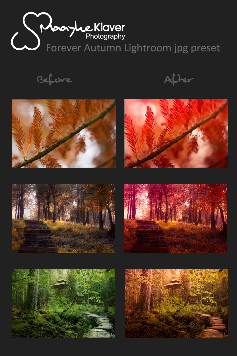 Forever Autumn Lightroom .jpg preset by MaaykeKlaver
