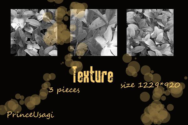 Texture Vinca by PrinceUsagi