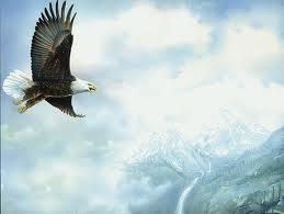 Flying Free by Jade-Nishida